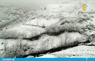 تصاویر زیبای روز برفی در مازندران