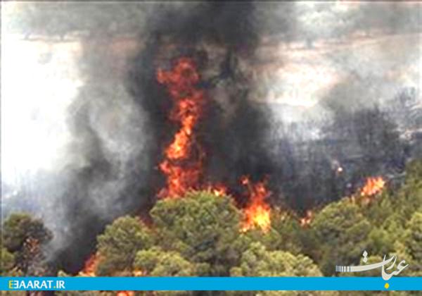 آتش سوزی- سایت عبارت