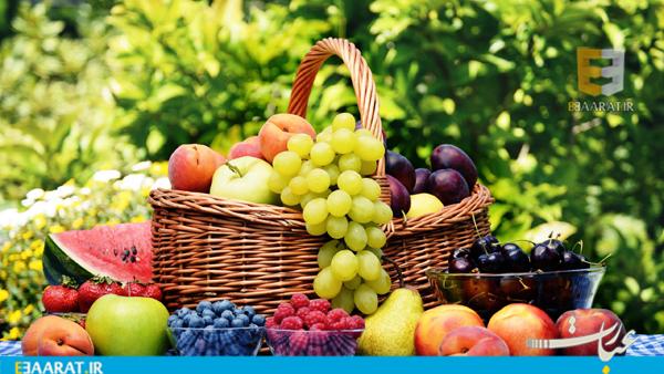 میوه- سایت عبارت