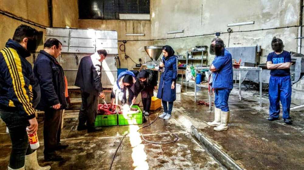 کارگاد تولید سوسیس