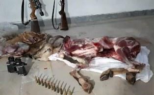 شکارچی گوشت + عبارت