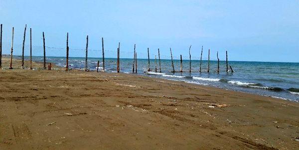ساحل + عبارت