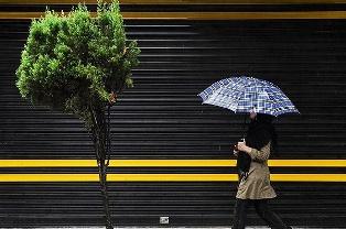 چتر باران  + عبارت