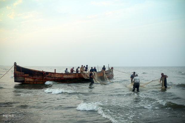 صید دریا + عبارت