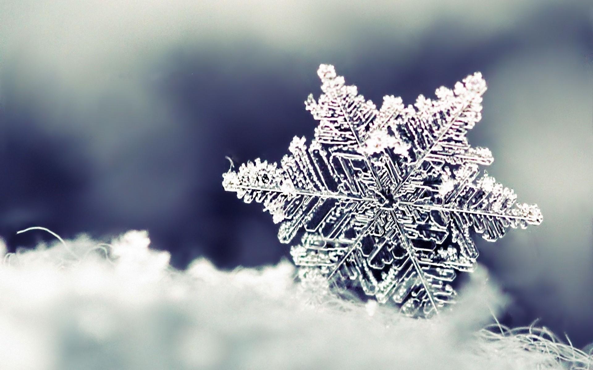 برف + عبارت