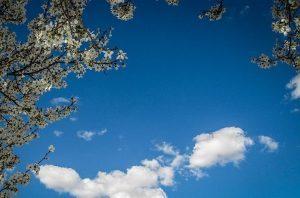 هواشناسی آفتابی ابری+ عبارت