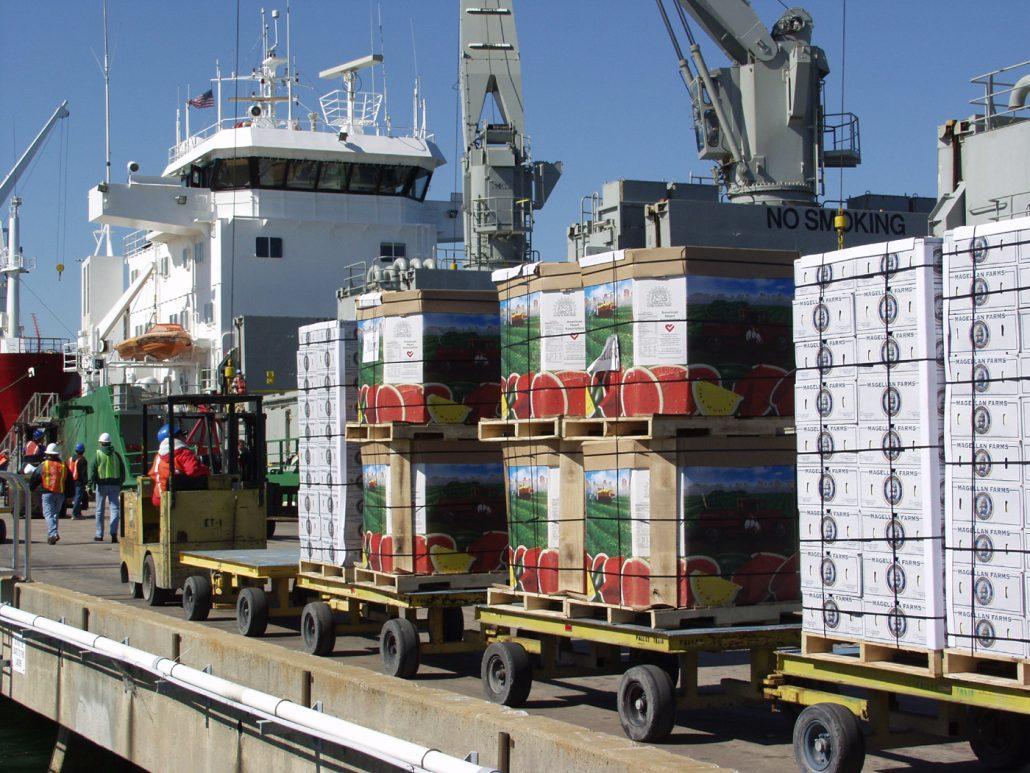 صادرات کشاورزی+عبارت