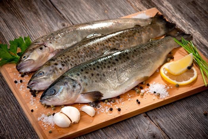 ماهی  + عبارت