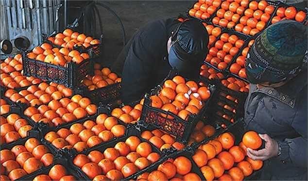 مرکبات پرتقال + عبارت