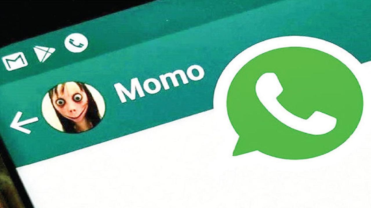 مومو+عبارت