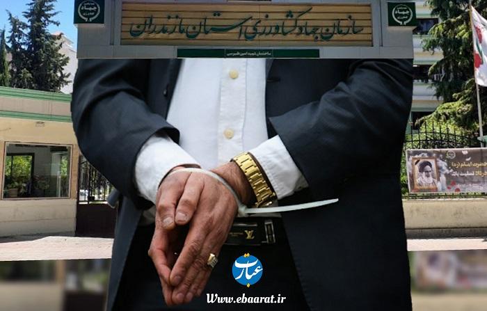 بازداشت دو مدیر جهادکشاورزی مازندران