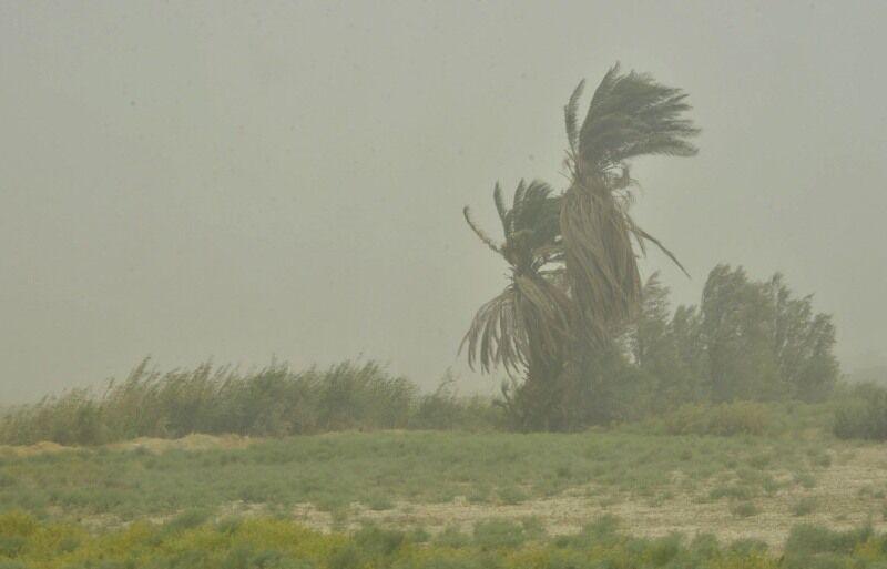 طوفان+عبارت