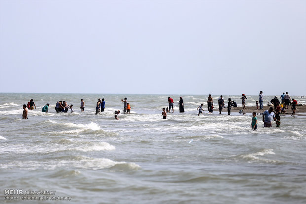دریا+ساحل+عبارت