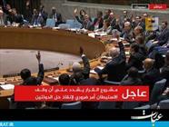 رای به توقف شهرکسازیها در شورای امنیت