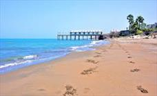 ساحل+عبارت