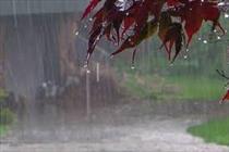 بارندگی+عبارت