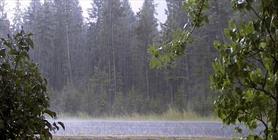 باران+عبارت