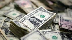 دلار ارز + عبارت