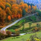 طبیعت جاده کیاسر + عبارت