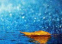 بارندگی بارانی هواشناسی + عبارت