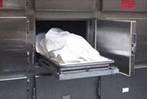 جسد جنازه مردن کشته شدن فوت سردخانه + عبارت