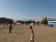 والیبال ساحلی+عبارت