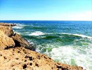 ساحل صخره ای+عبارت